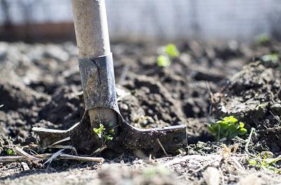 Vorbereitung neuer Rasen